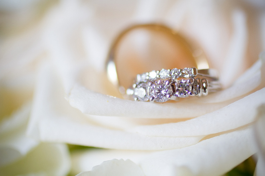 wedding rings with rose flower white